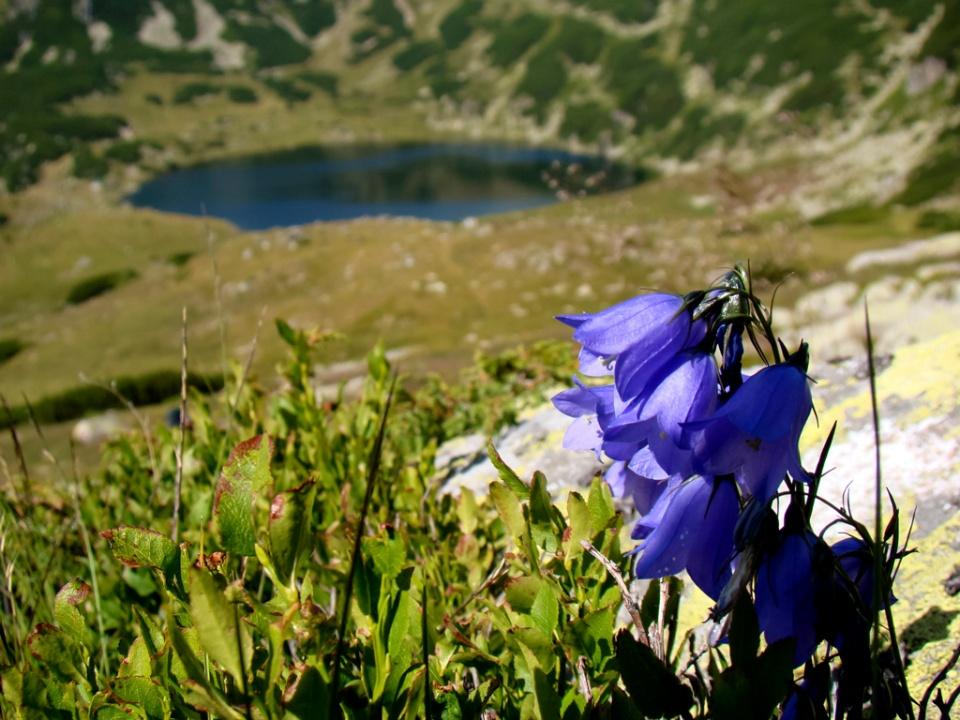 Lăsăm în urmă Lacul Zănoaga