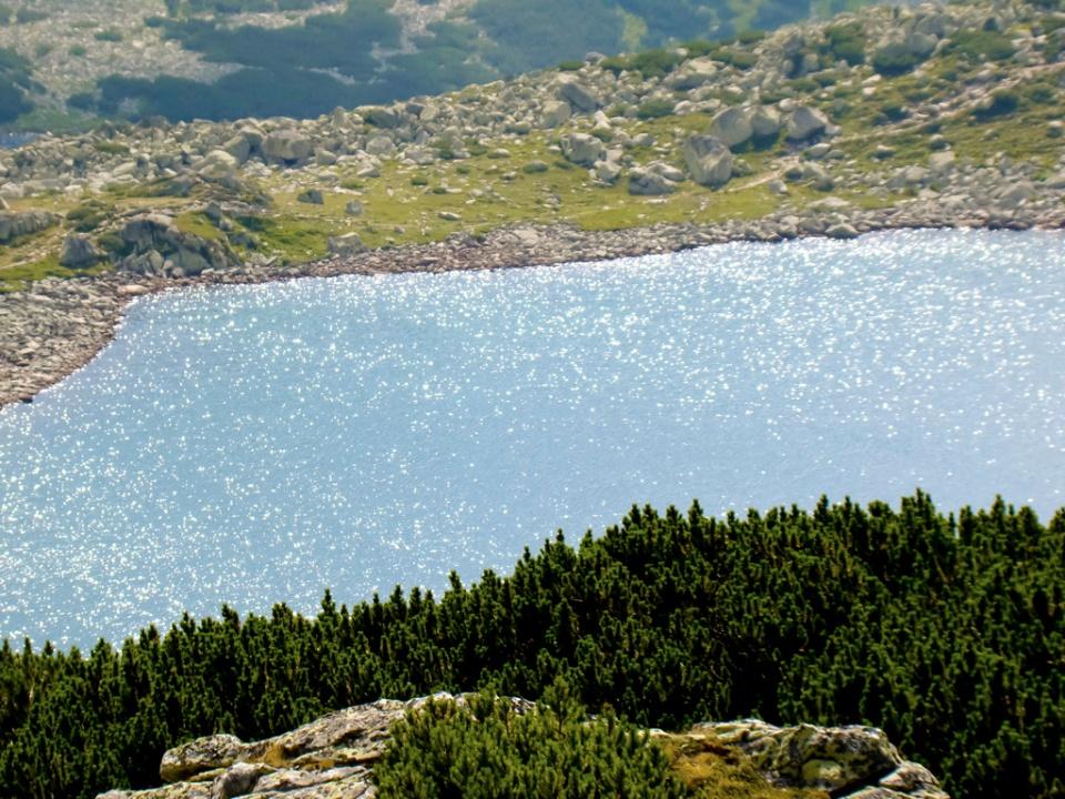 Perle pe Lacul Bucura