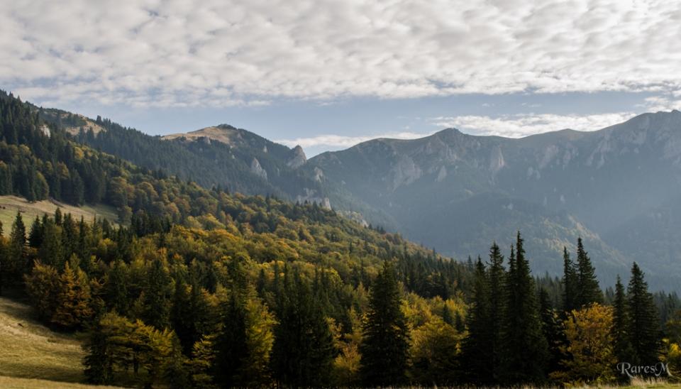 Muchia Gropșoare-Zăganu de la Muntele Roșu